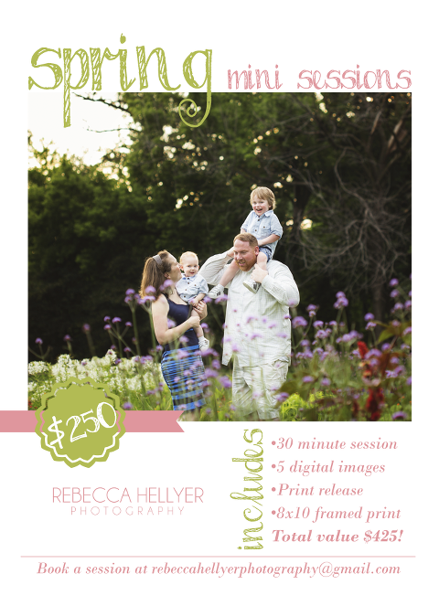 spring mini sessions chicago family photographer