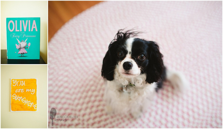 dog olivia book | Chicago Newborn Photographer | Rebecca Hellyer Photography