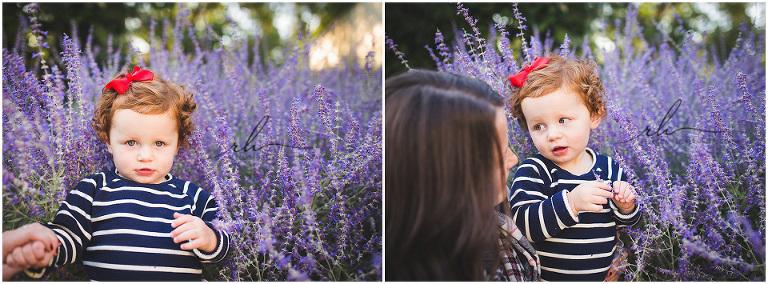 Peggy Notebaert Nature Museum garden photographer