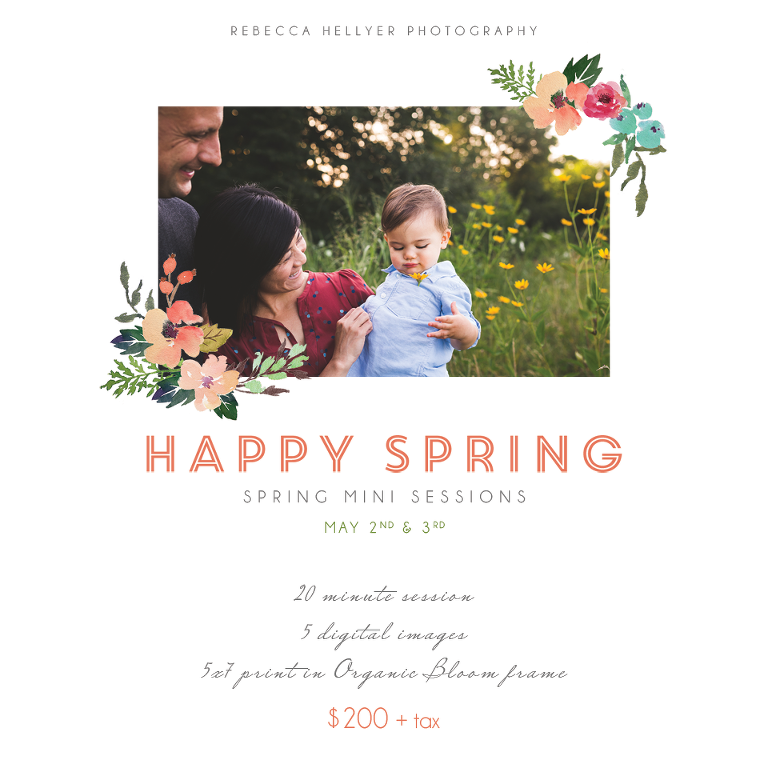 Spring Mini Sessions | Chicago Photographer